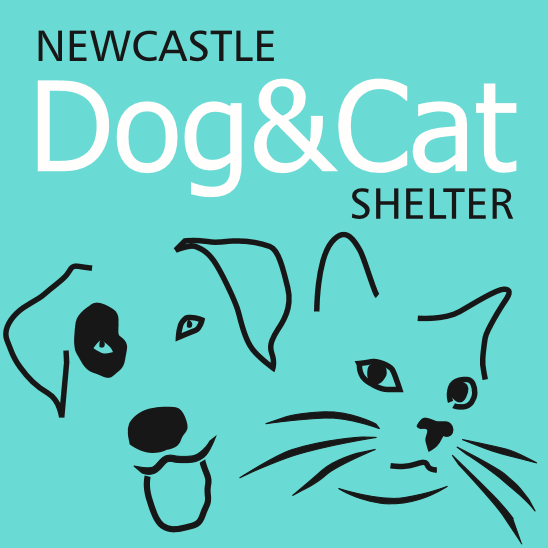 Newcastle Cat & Dog Shelter