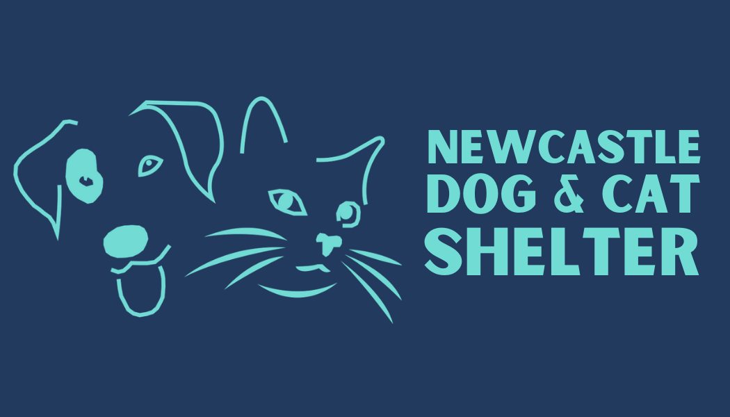Newcastle Dog & Shelter